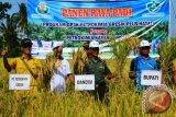 Petani Lombok antusias dengan GP3K Petrokimia
