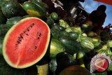 Khasiat buah semangka bagi kesehatan tubuh
