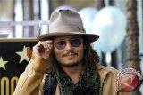 Amber Heard Laporkan Johnny Depp Karena KDRT