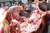 Cegah daging gelonggongan, Dinas Peternakan Jateng sosialisasi ke masyarakat