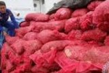 Police Foil Attempt of Smuggling Three Tons of Garlic