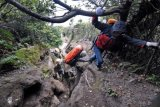 Rescuers Still Searching Two Missing Climbers At Mount Slamet