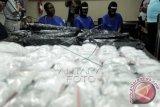 Pegawai Pemakai Narkoba merupakan Tenaga Harian Lepas Pesisir Selatan