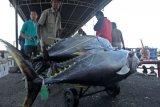 Cuaca Buruk, Transaksi Pelelangan Ikan di Cilacap Menurun