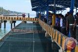 Bandeng budidaya di kolam dermaga PPI Donggala segera dipanen