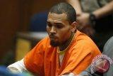 Dituduh lakukan pemerkosaan, Chris Brown tuntut balik si penuduh