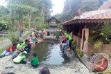 Wisata Kampung Flory edukasi pengunjung berkebun modern