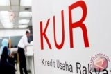 KUR Credit Interest Cut To Seven Percent in 2018