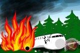 Hercules yang padamkan kebakaran Australia jatuh, 3 orang tewas