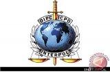 Keuntungan Indonesia bila wakilnya di komite eksekutif-Interpol