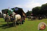 Road to Festival Gerobak Sapi 2017