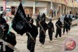 MPR: Kaji dengan matang rencana pulangkan anak WNI eks ISIS