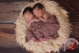 Fakta unik dan cara dapatkan anak kembar