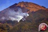 Kebakaran hutan  kembali terjadi di Gunung Sumbing