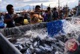 BI Sulut : Ekonomi Sulut melambat dipicu penurunan pertanian dan perikanan