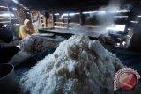 Kemenko Maritim:  ada 15.000 hektare lahan garam di Aceh