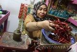 Seorang pedagang menimbang cabai kering impor untuk dijual dengan harga Rp75 ribu per kilogram di Pasar Dinoyo, Malang, Jawa Timur, Rabu (2/3). Sejumlah pedagang memilih untuk menjual cabai kering yang diimpor dari India dan China terkait masih tingginya harga cabai segar yang harganya berkisar Rp100 ribu per kilogram. Antara Jatim/Ari Bowo Sucipto/zk/17