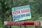 Sumbar Menghadang Deforestasi, Kerusakan Hutan Capai 578.372 Hektare