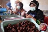 NTB Kembangkan Kampung Cokelat di Lombok Utara