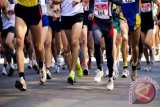 Various cultural shows to enliven CCM marathon in Palu