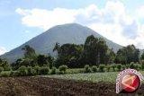 Basarnas Sulit Mengevakuasi Jenazah Pendaki Gunung Mekongga