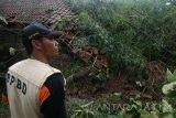 Petugas dari Badan Penanggulangan Bencana Daerah (BPBD) memeriksa lokasi longsor di Desa Surat, Kecamatan Mojo, Kediri, Jawa Timur, Jumat (7/4). Longsor pasca hujan deras di wilayah lereng gunung Wilis tersebut mengakibatkan enam rumah warga rusak parah. Antara Jatim/Prasetia Fauzani/zk/17