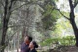 Pengusaha Sumbangkan Lahan Untuk Monumen Garuda Pancasila