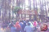 Tiga objek wisata Bantul belum miliki TDUP