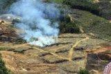 Petisi tertibkan perusahaan sawit ilegal diserahkan ke Gubernur Riau