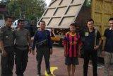 Truk dan Sopir Bawa 87 Keping Kayu dari TNBT Diamankan