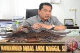 Legislator: guru kesenian dari DKP Palu tidak pernah mengajar
