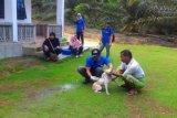4.000 anjing di Gumas divaksinasi