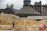 Dinas PU Dumai Berencana Tata Ulang Lokasi Pabrik Semen