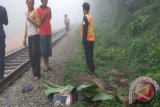 Pengendara sepeda kayuh warga Grobogan ini tewas  terserempet kereta