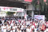 Ribuan Karyawan BUMN Sulut Ikut Jalan Sehat