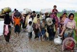 Bangladesh-Myanmar sepakat tuntaskan repatriasi Rohingya