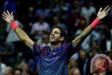 Del Potro akhiri laju kemenangan Federer di Indian Wells