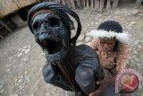 Tim Arkeolog Konservasi 4 Mumi di Jayawijaya