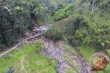 Sumsel kembangkan lanskap pengelolaan hutan