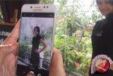 Tips memotret foto jurnalistik dengan handphone