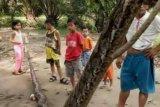 Layaknya Gladiator, Seorang Warga Riau Berduel Dengan Ular Tujuh Meter