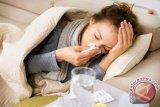 100 nyawa terenggut akibat influenza di Rumania