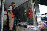 BKIPM Kendari tingkatkan ekspor komoditas perikanan