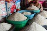 Bulog Riau-Kepri sebar 100-150 ton beras hadapi musim paceklik