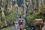 Umat Hindu Dharma di Bali Merayakan Hari Suci Galungan