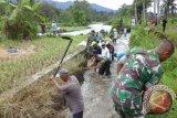 Kodim Pariaman Bantu Petani Perbaiki Irigasi yang Jebol Akibat Luapan Air