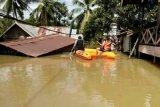 Banjir di Madina akibatkan belasan orang meninggal dunia