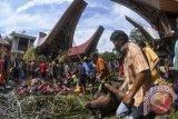 Penjabat gubernur kagumi kekayaan budaya Toraja