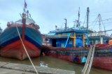 Melaut, nelayan cantrang Batang tunggu hasil validasi KKP