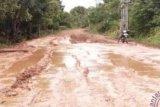 Jalan Kampung Temusai Bungaraya Semakin Memprihatinkan, Apalagi Kalau Hujan Datang